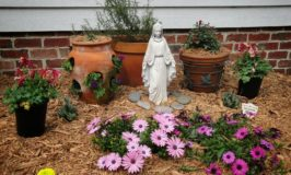 Preparing to Celebrate the Visitation of the Blessed Virgin Mary