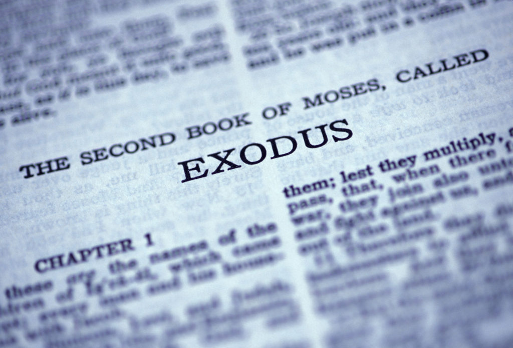 My youth group is reading Exodus. They not-so-secretly like it.